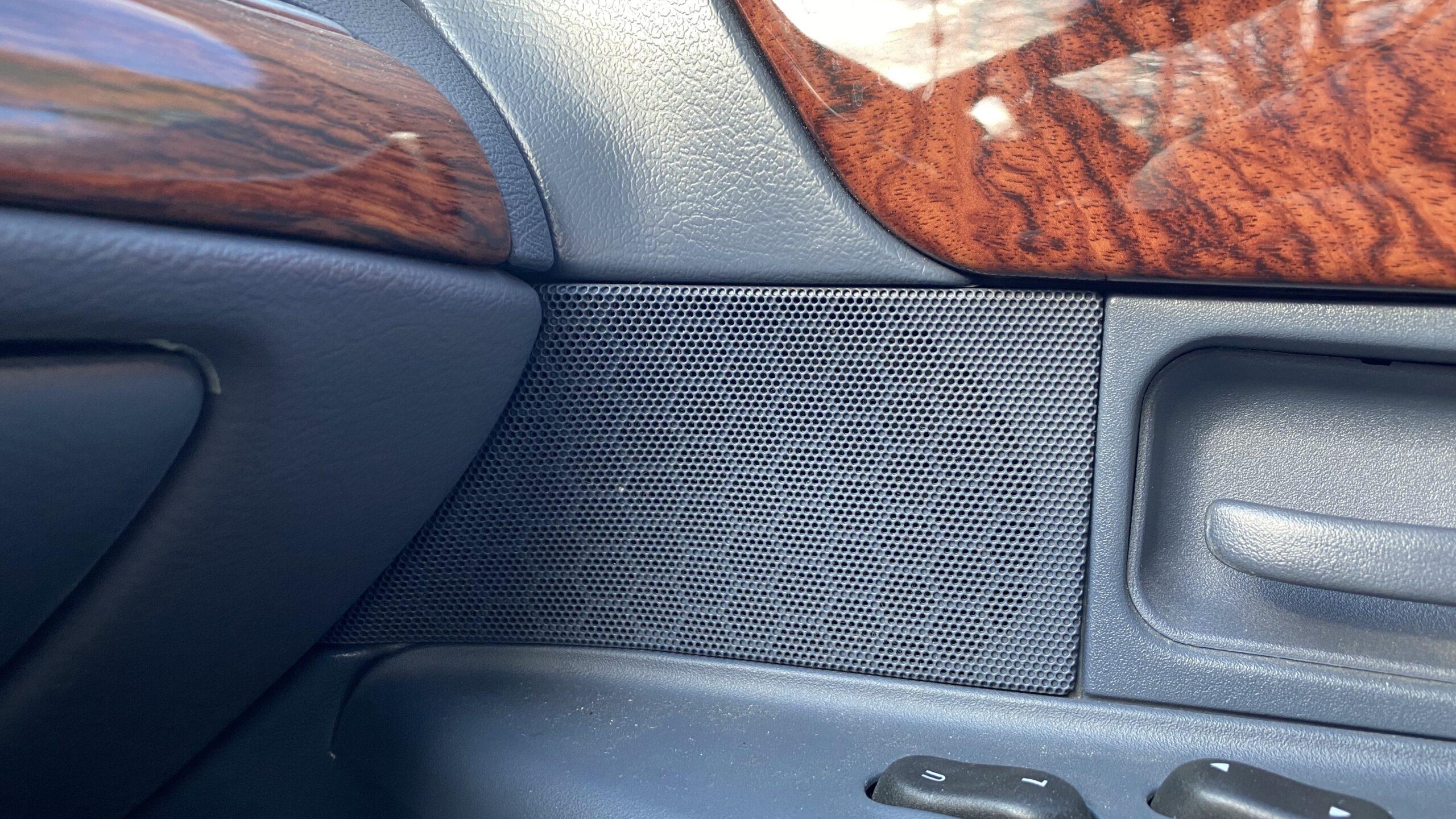 Passenger door speaker grille.
