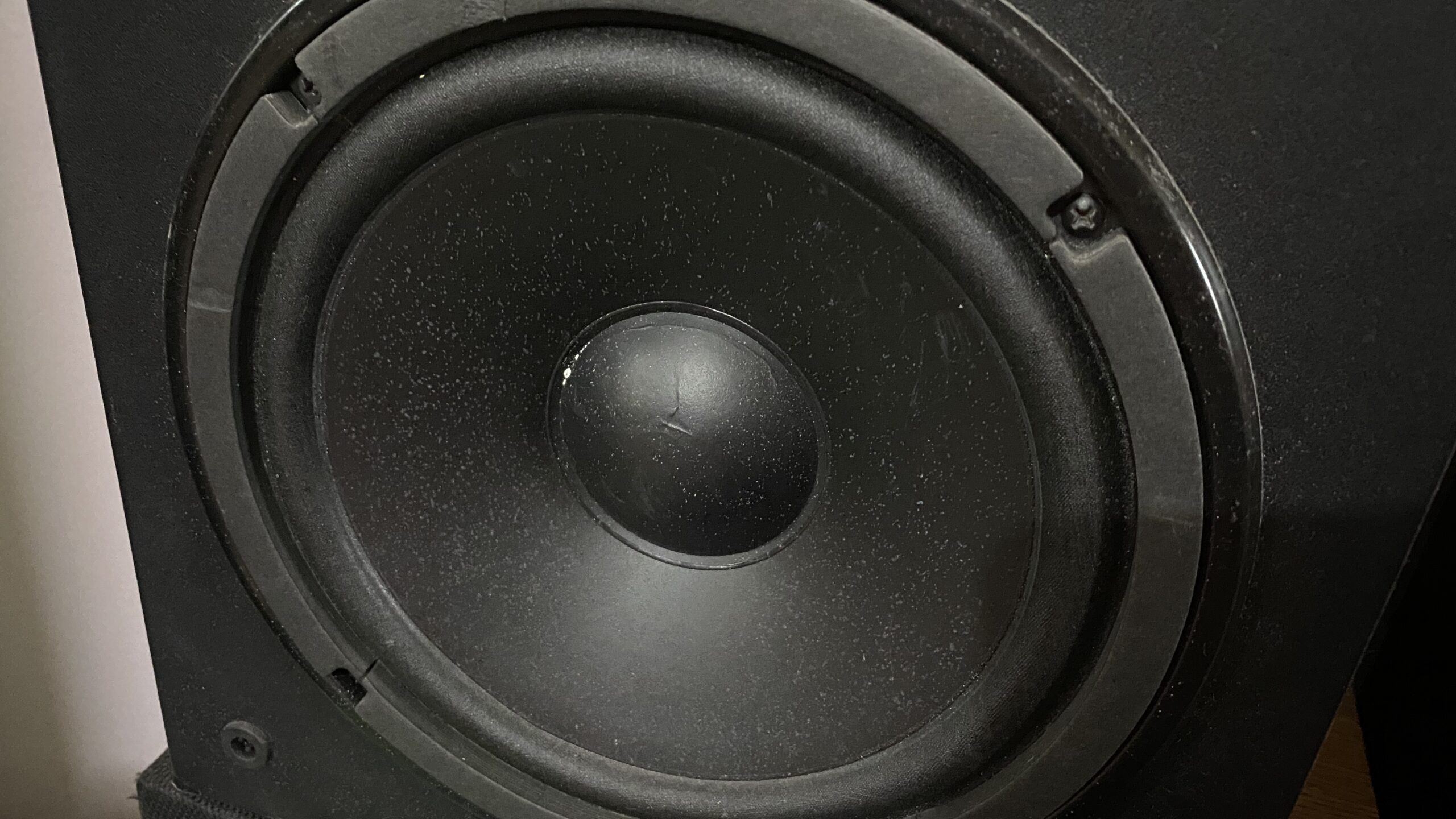 A woofer with a foam surround.